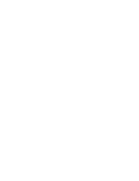 Logo WEB Light